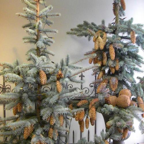 1 Dekoracje - Boże Narodzenie