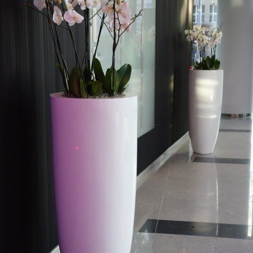 15 Firmy-dekoracje